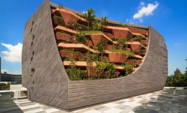 سنغافورة: متحف التاريخ الطبيعي