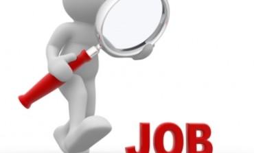 لينكدإن تكشف أولويات الباحثين عن عمل في دولة الإمارات