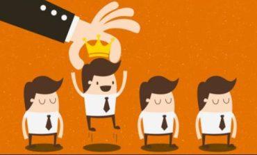 تأثير المحسوبيات والرغبات الشخصية على بيئة العمل في الشركات