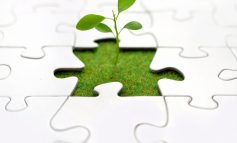 المستقبل الأخضر ينمو بسرعة والفرص كبيرة لروّاد الأعمال