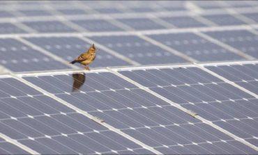 القمة العالمية للحكومات تحدد ثلاث تغيرات جذرية في مستقبل الطاقة