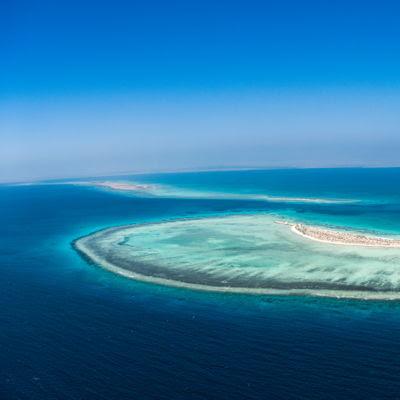 شركة البحر الأحمر للتطوير وجامعة الملك عبدالله تبتكران طريقة جديدة لحماية البيئة البحرية