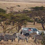 """إتمام تجربة لاند روڤر ديفندر الجديدة مع """"تسك"""" لدعم جهود الحفاظ على الأسود في كينيا"""