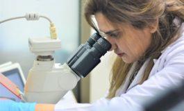 شركة تيرتل تري لابز (Turtle Tree Labs) للتقنيات الحيوية تعلن عن جولة تمويل تمهيدية بقيادة باقة من الشركات الاستثمارية الرائدة