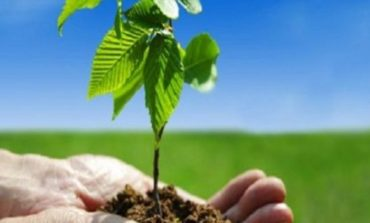 الحوكمة البيئية والاجتماعية وحوكمة الشركات تتصدر مشهد الاستثمار الآن