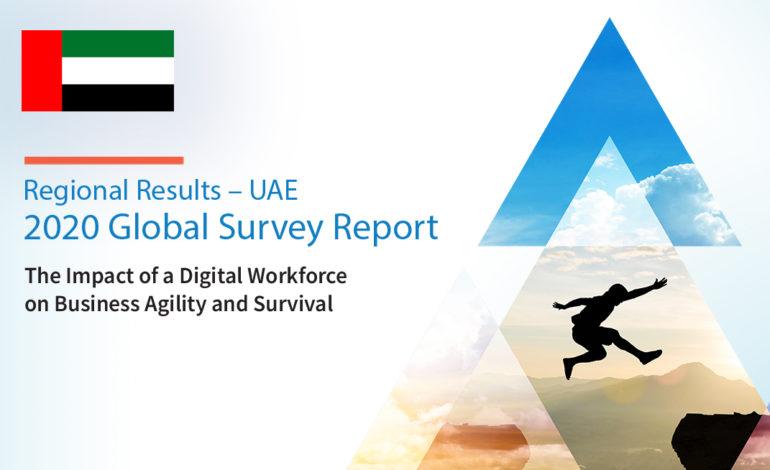 رائدو الأعمال الإماراتيون يتبنون الأتمتة الذكية لتعزيز الإنتاجية وتسريع التحوّل الرقمي