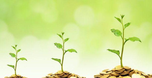 زيادة ملحوظة في الطلب على الاستثمار المستدام