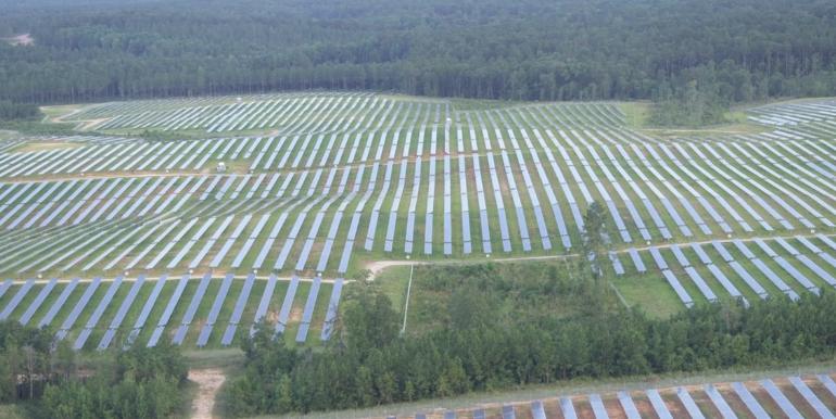 الإمارات تقود المنطقة في مجال الطاقة الشمسية