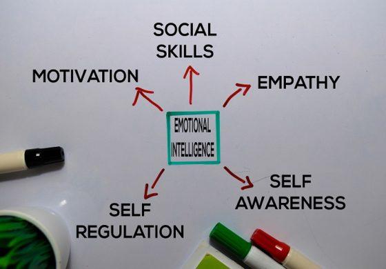 كيف تستخدم الذكاء العاطفي لنجاح العمل