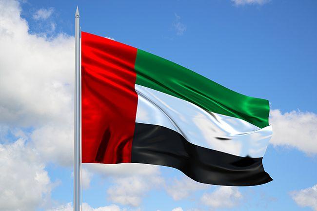 الإمارات تتقدم أربعة مراكز عالمياً في حصة البحث العلمي