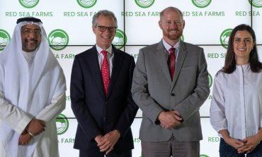 Red Sea Farms الناشئة في مجال التكنولوجيا الزراعية جاهدةً لتمكين مزارع الشرق الأوسط وشمال إفريقيا من زراعة المحاصيل باستخدام المياه المالحة